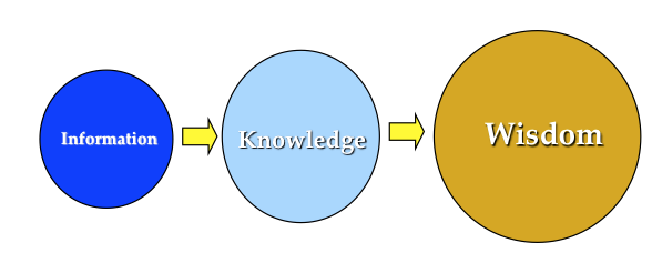 Illustration of the educational process