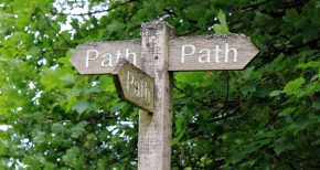Navigating multiple paths to service-learning projects