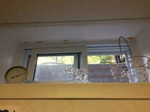"Picture is of a narrow basement window, looking out at a thin strip of ""outdoors"" beyond a metal window well. This is to illustrate the author's limited view of the outdoors from her desk."