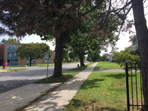 Picture shows a streetscape with trees, grass, and sidewalk. Purpose is to illustrate that getting outside is a good idea.